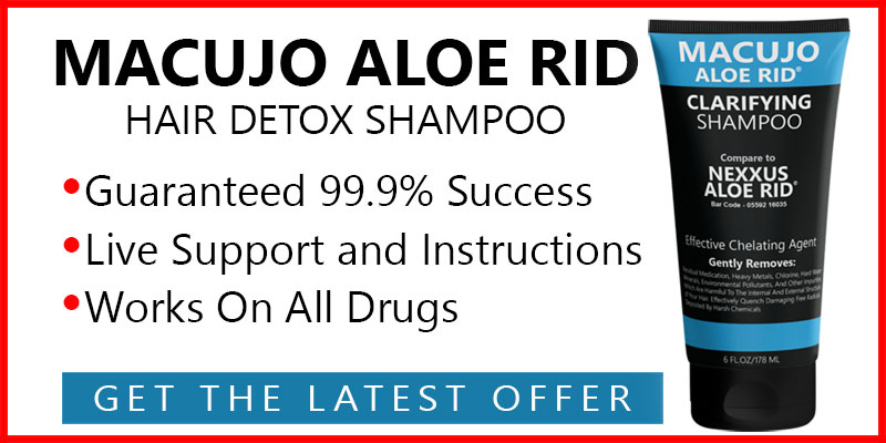 the best hair follicle shampoo